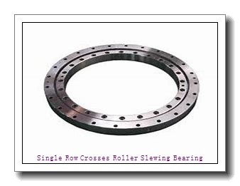 Thin Section Type Slewing Ring Swing Turntable Wanda Brand