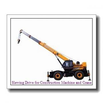 """21"""" Slewing Drive We21 Used for Truck Crane and Ship Crane"""